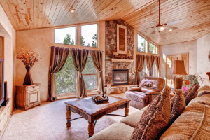 Pike National Forest 1151-small-006-Great Room-666x445-72dpi