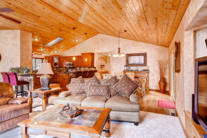Pike National Forest 1151-small-007-Great Room-666x445-72dpi