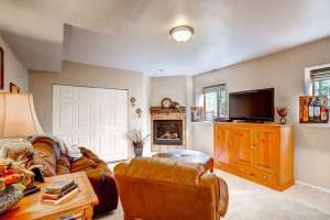 Pike National Forest 1151-small-022-Lower Level Family Room-666x445-72dpi