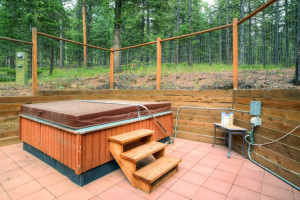 Pike National Forest 1151-small-028-Exterior Hot Tub-666x445-72dpi