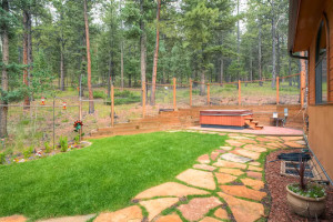 Pike National Forest 1151-small-029-Back Yard-666x445-72dpi
